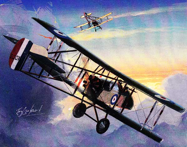 Airco DH.2 Painting