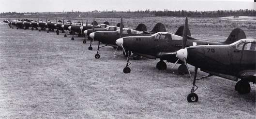 P-39 Airacobras in lineup