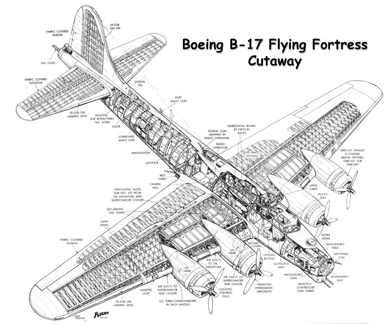 Boeing B-17 Flying Fortress  B17 Bomber Drawing