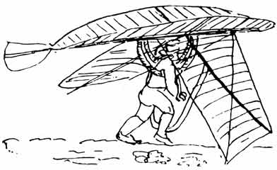 Man-powered Ornithopter