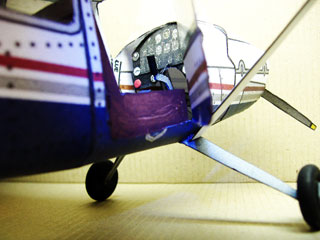 Model With Clear Cabin