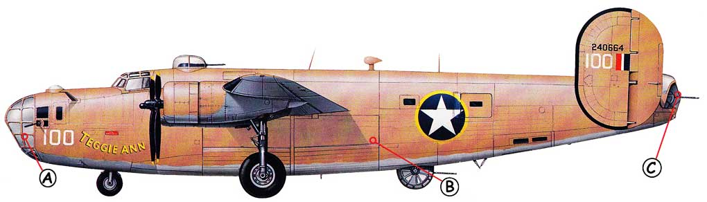 Consolidated B-24 Callout