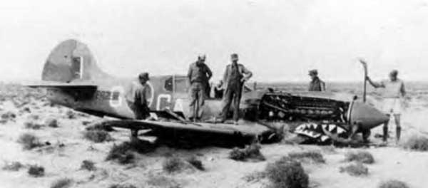 Curtiss P40 Warhawk Crash