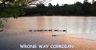 WRONG WAY DUCKigan