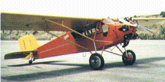 Curtiss Robin posing