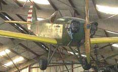 Bowers Fly Baby in Museum