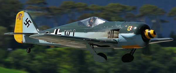 Recent Photo of Focke Wulf Fw 190 at an Airshow