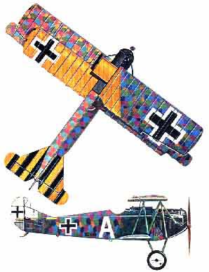 Fokker DVII two view