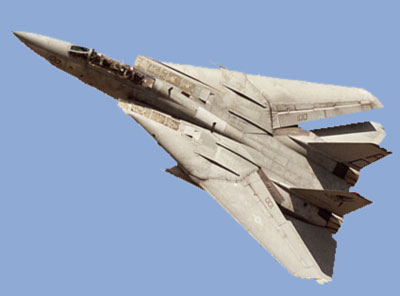 photo for the F-14 Tomcat paper model