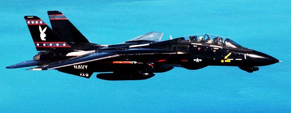Grumman F 14 Tomcat Aircraft