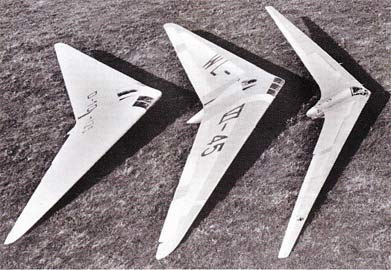 Horten Flying Wings