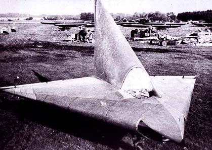 Lippisch Dm1 Aircraft