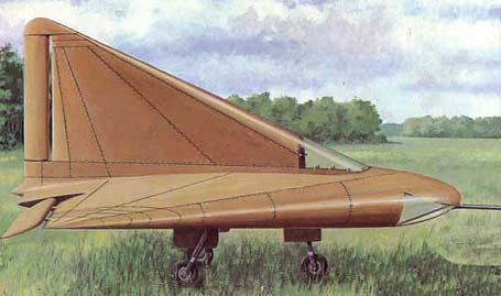 photo of the Lippisch DM-1 Glider