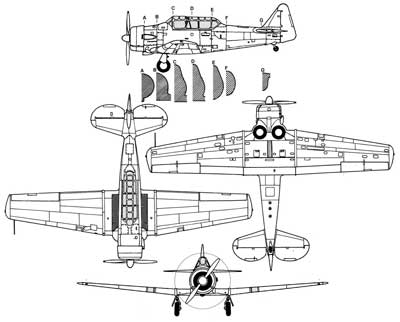 3 View of a North American Texan