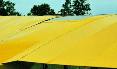 Piper Cub View of wings