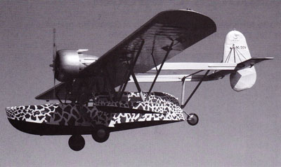 Sikorsky S-39 In Flight