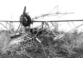 Sikorsky S-39 crashed