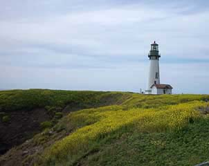 Yaquina Head LH-photo