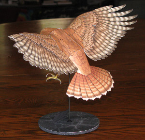 top view of a red tailed hawk paper model