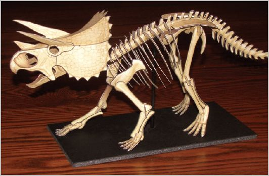 Triceratops Skeleton paper model kit