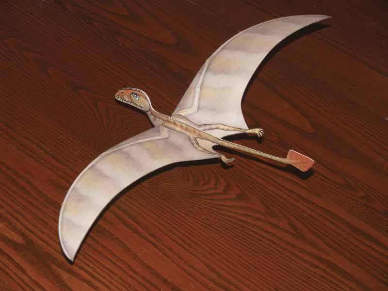 Dimorphodon Paper Glider